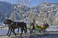 Pferdeschlittenfahrt Jägersee