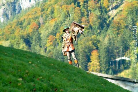 Foto Greifvogelschau auf der Burg Hohen Werfen