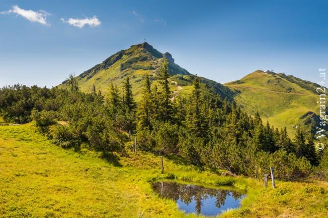 Foto Wagrain Sommerfoto - Gipfelblick Grieszenkar